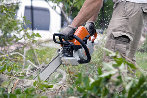 Certified Treecare Safety Professional (CTSP) Certification