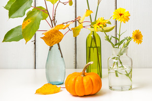autumnal leaves and flowers in-vases