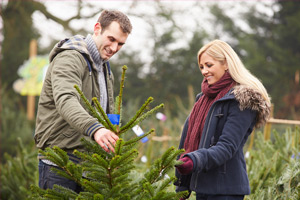 couple choosing a Christmas tree