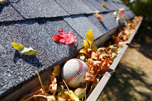 gutter full of leaves and baseball