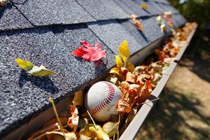 gutter full of leaves and baseball